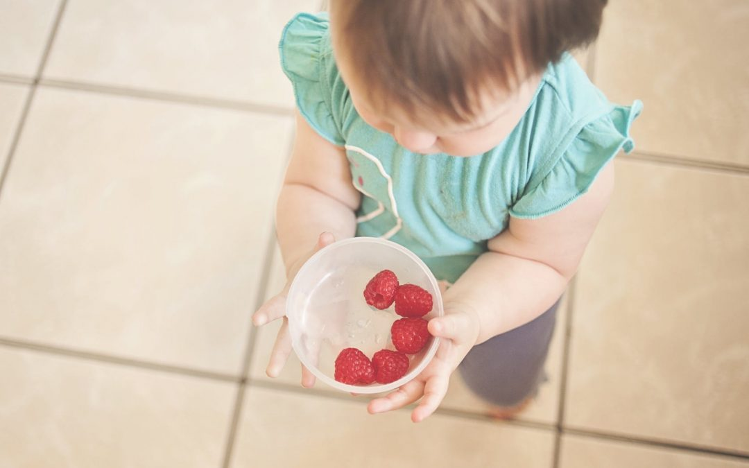6 Ways a Dietitian can Help Your Fussy Eater